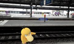 Ein wildes Enton greift auf dem Gleis an. (Bild: Screenshot)