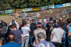 Motocross Amriswil 2017 (Bild: Reto Martin)