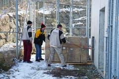 In dieser Transportkiste kam Julinka im Walter-Zoo an. (Bild: pd)