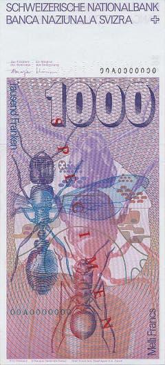 ...ebenso wie drei Ameisen und ein Vertikalschnitt durch einen Ameisenhaufen. (Bild: Archiv der SNB)