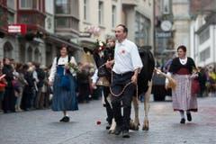 """Die Gruppe """"Solothurner Landwirtschaft mit Kühen und Schafen"""". (Bild: Keystone)"""