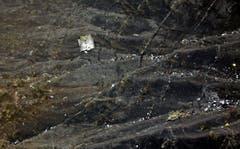 Trümmerteile der Maschine sind weit in der gebirgigen Landschaft verstreut. (Bild: Keystone (Thomas Koehler/photothek.net/Auswärtiges Amt/dpa))