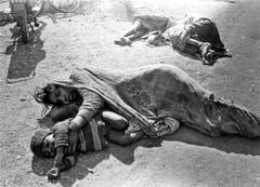 Ewiger Schlaf: Tote liegen nach dem Unglück auf den Strassen Bhopals. (Bild: Keystone)