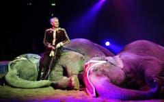 Franco Knie mit seinen Asiatischen Elefanten. (Bild: Keystone)