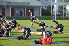 Die Nationalspieler aus Südamerika sind auch am Boden beweglich. (Bild: Hanspeter Schiess)