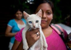 Diese Frau hat ihre Katze gerettet: Neun Menschen starben als ein Haus wegen heftigen Regens in Managua, Nicaragua zusammenstürzte. (Bild: Keystone)