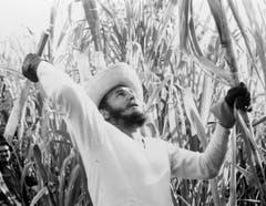 Fidel Castro im Februar 1961.
