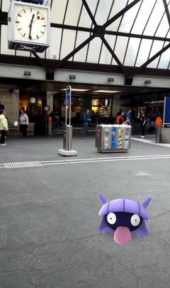 Ein Muschas am Bahnhof St.Gallen (Bild: Screenshot)