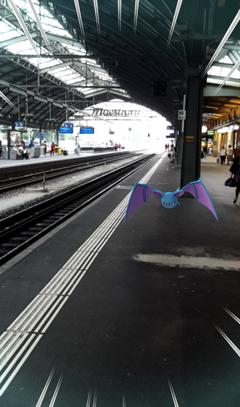 Ein wildes Zubat auf Gleis 1. (Bild: Screenshot)