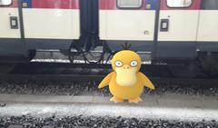 Ein Enton auf dem Gleis. (Bild: Screenshot)