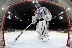 Jussi Markkanen reinigt das Eis vor seinem Tor. (Bild: Keystone)