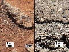 Dieser Kiesel soll beweisen, dass es Wasser auf dem Mars gab. (Bild: Keystone / Nasa)