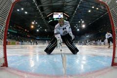 Lugano Goalie Daniel Manzato konnte sich nicht gegen die Zuger durchsetzen. (Bild: Keystone/Alexandra Wey)