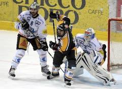 Die Zuger Tim Ramhol (links) und Eero Kilpeläinen (rechts) gegen Luganos Sebastien Reuille. (Bild: Keystone)