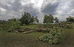 Das Unwetter vom 12. Juli verwüstete das Heitere-Gelände. Trotzdem findet das Openair statt. (Bild: Eveline Beerkicher/Neue LZ)