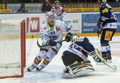 Nicklas Danielsson (links) feiert seinen Treffer gegen den EVZ. (Bild: Keystone)