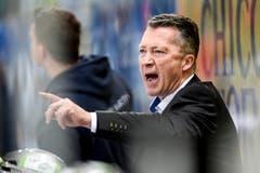 Zug-Coach Harold Kreis. (Bild: Keystone)