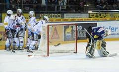 Die Fribourger Spieler jubeln. Der EV Zug-Goalie Michael Tobler ist geschlagen. (Bild: Keystone)