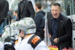 Noch bangt Zugs Head Coach Harold Kreis um den Sieg, der eine Niederlagsserie beenden soll. (Bild: Keystone / Marcel Bieri)