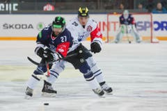 Zugs Josh Holden (links) gegen den Ingolstädter Marc Schmidpeter (Bild: Dominik Wunderli / Neue LZ)