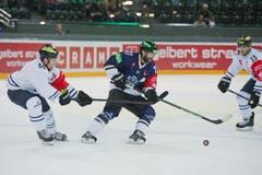Josh Holden (mitte) gegen Patrick Köppchen (links) und John Laliberte (Bild: Dominik Wunderli / Neue LZ)