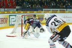 Jussi Markkanen hatte viel zu tun. Rechts im Bild Berns Marc Reichert. (Bild: Stefan Kaiser/Neue ZZ)