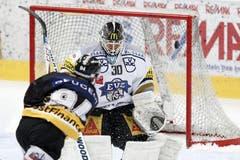 Berns Christoph Bertschy erzielt das 1:1, Zugs Jussi Markkanen ohne Abwehrchance. (Bild: Keystone)
