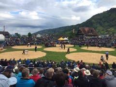 Die Zuschauer am Schwyzer Kantonalen in Arth. (Bild: Alexandra Wey / Keystone)