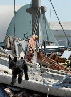 Das Erdbeben ereignete sich in der gleichen Gegend, wie das Beben vom 20. Mai. (Bild: Keystone / AP)