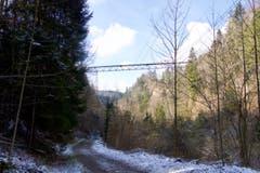Wanderung 1.3.2018 (Bild: Adrian Lemmenmeier)