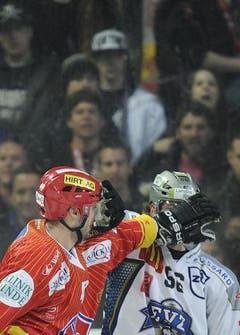 Der Bieler Philipp Wetzel und Timo Helbling vom EVZ im «Zweikampf». (Bild: Keystone)