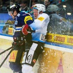 Lassen die Banden knallen: Zugs Alessandro Chiesa (links) gegen Timo Helbling von Gottéron. (Bild: Keystone)