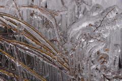 Kunstwerk in Eis. (Bild: Bruno Gschwend)