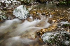 mit Eis überfrorene Steine am Altbach. (Bild: Marc Bollhalder)