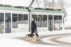 Wetterbilder, Schnee in Speicher AR. (Bild: Hanspeter Schiess)