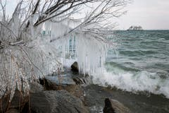Eiszeit am Bodensee. (Bild: Gabriela Hausammann)