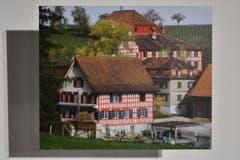 Mai: Rolf Dubs zeigt das Schloss Hagenwil für einmal im Hintergrund. (Bild: manuel nagel)