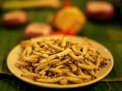 Bambuswürmer in Thailand. (Bild: Keystone)