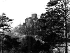Eine alte Fotografie des Schlosses vor dem Rückbau 1972. (Bild: (Bürgerarchiv Weinfelden))