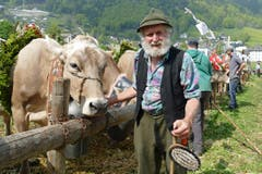 Das Jubiläum war ein bunter Querschnitt durch 100 Jahre Viehzucht in Engelberg. (Bild: Beat Christen)