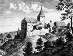 Alter Kuperstich des Schlosses. Es zeigt das Anwesen wie es etwa um 1740 aussah. (Bild: (Bürgerarchiv Weinfelden))