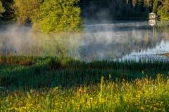 Kühler Morgen am Wenigerweiher (Bild: Christian Wild)