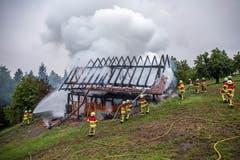 Dank dem Einsatz der Freiwilligen Feuerwehr Zug war der Brand rasch gelöscht. (Bild: Freiwillige Feuerwehr Stadt Zug)