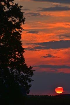 Sonnenuntergang in Uttwil vom 18. Mai 2018, (Bild:Lena Bruderer)