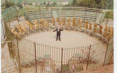 Die erste Raubtiershow in der Arena des Plättli-Zoo. (Bild: PD, frühe 1970er-Jahre)