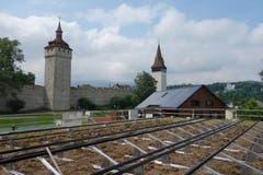 Das Dach der Turnhalle nahe der Museggmauer (Bild: Christian Frank)