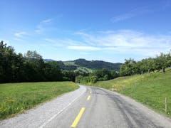 Der erste Aufstieg zum Hanfnersberg hinauf ist geschafft. (Bild: Marlen Hämmerli)
