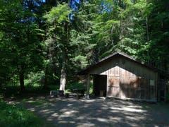 Im Anschwilerwald auf dem Sonnenberg hat es eine Grillstelle mit Hütte. (Bild: Marlen Hämmerli)