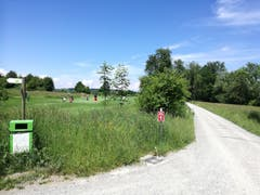 Am Golfplatz Waldkirch müssen sich Velofahrer und Wanderer den Weg teilen, was für Spaziergänger unangenehm sein kann. (Bild: Marlen Hämmerli)