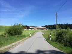 Unterwegs zum Anschwilerwald (oben rechts im Bild) biegt der Weg an dieser Stelle unvermittelt nach rechts ab. Am Hof im Bild kommt man also nicht direkt vorbei.(Bild: Marlen Hämmerli)